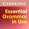 Essential Grammar in Use Activities